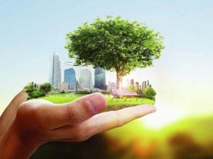 Экологическая и техносферная безопасность